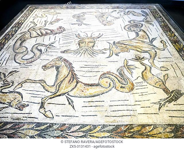 Floor mosaic with ocean and marine animals from the thermal baths of the Villa dei Severi in the locality of Baccano on the Via Cassia