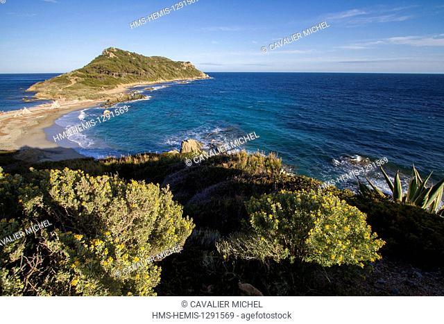 France, Var, Saint Tropez peninsula, Cap Taillat, Bay of Briande and peninsula of the Cap Taillat