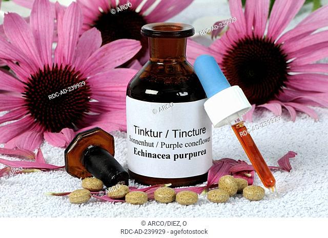 Purple Coneflower tincture and pills / Echinacea purpurea