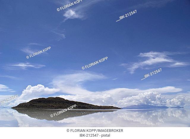 Isla del Pescado Island in the salt desert Salar de Uyuni, Bolivia