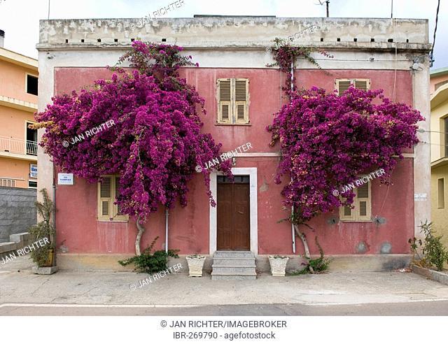 OLd House, Sardinia, Italy