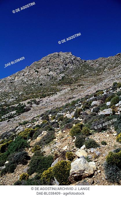 Maquis shrubland and rocky hills, Tilos island, Greece