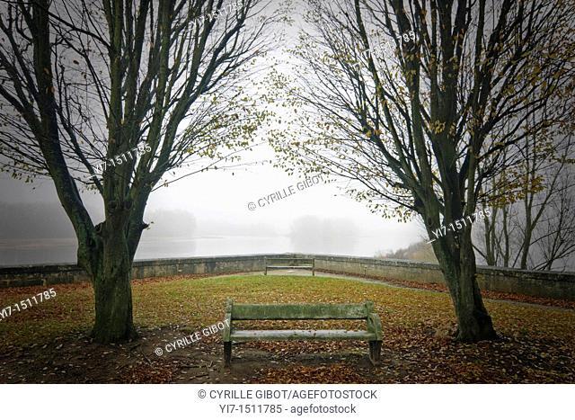 Old bench in public garden