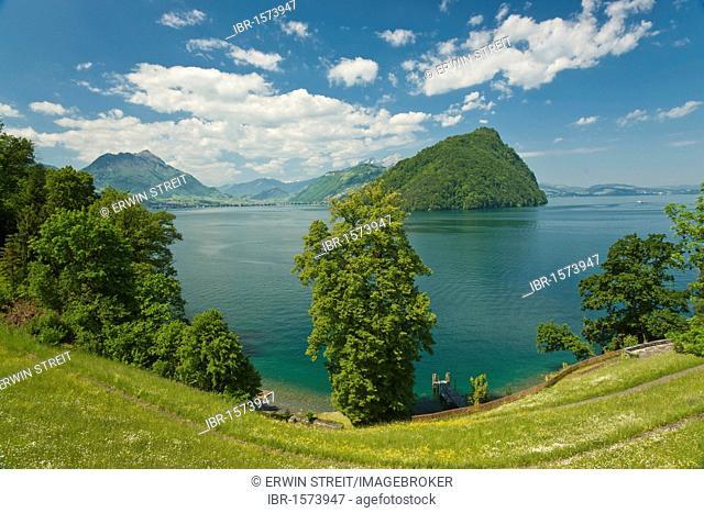 View over Lake Lucerne on Mt. Buergenstock and Mt. Stanserhorn, Vitznau, Canton Lucerne, Switzerland, Europe