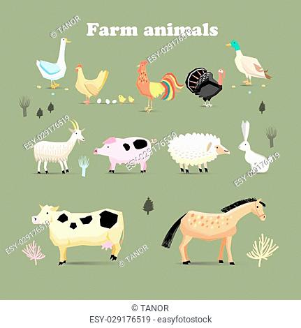 Set of farm animals, set in a flat vector style with chicken turkeys cock pig sheep duck goose rabbit goat dairy cow horses
