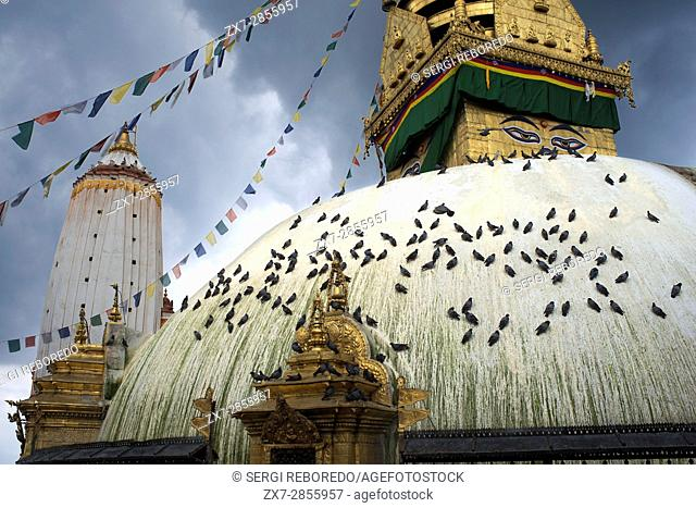 Swayambhunath Stupa views, a variety of shrines and temples which is known as the Monkey Temple, an ancient religious complex atop a hill in the Kathmandu...