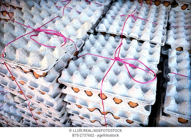 Stacked egg cartons tied up with fuchsia string. Fez, Morocco