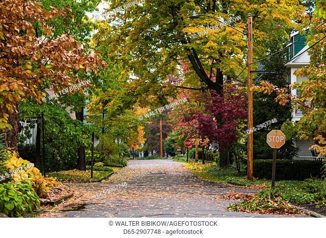 USA, New York, Western New York, Chautauqua, Chautauqua Institution Historic District, street, autumn