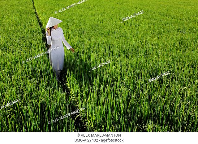 Woman wearing traditional Vietnamese outfit standing in a rice paddy