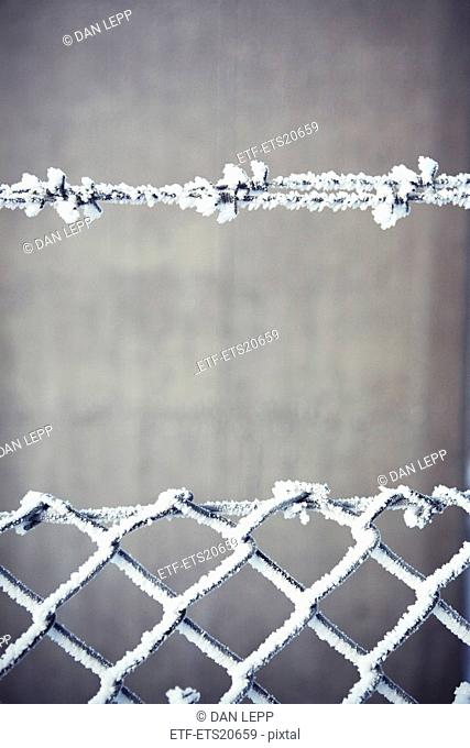 Frost covered fence, close-up
