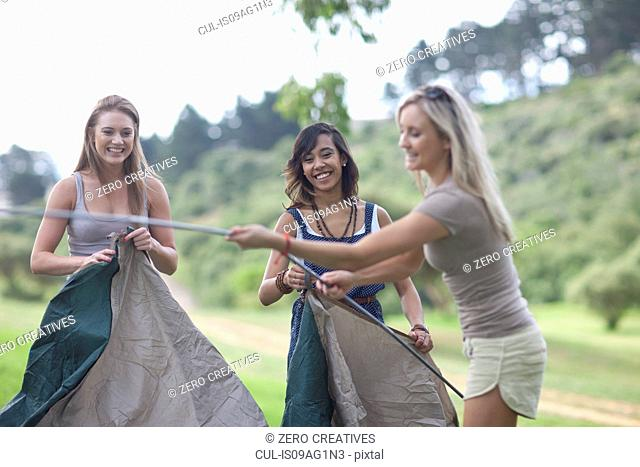 Three friends putting up tent whilst camping
