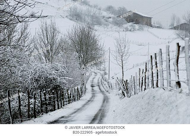 Access road to a 'caserío' (traditional basque rural house) in Aztiria neighborhood, Legazpi, Gipuzkoa, Basque Country, Spain