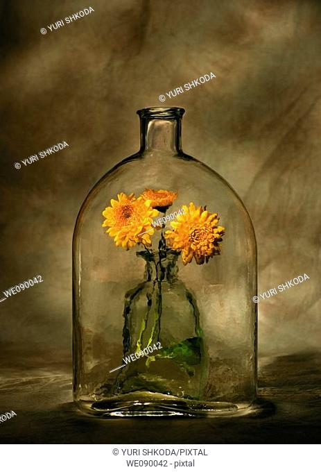Bottle with marigolds
