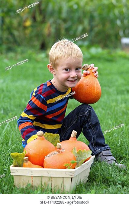 A blond boy in a field with pumpkins