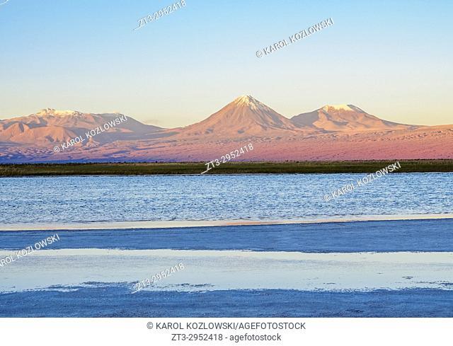 View over the Laguna Baltinache towards the Volcano Licancabur at sunset, Salar de Atacama, Antofagasta Region, Chile