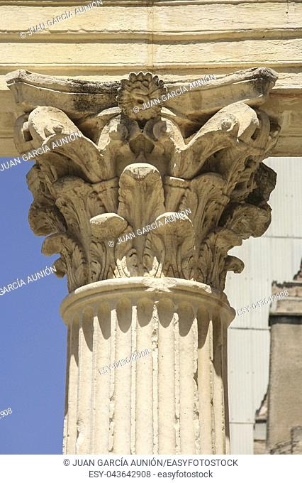 Corinthian capital of Roman Provincial Forum of Merida, Spain. Remains of the portico of monumental site, Extremadura, Spain
