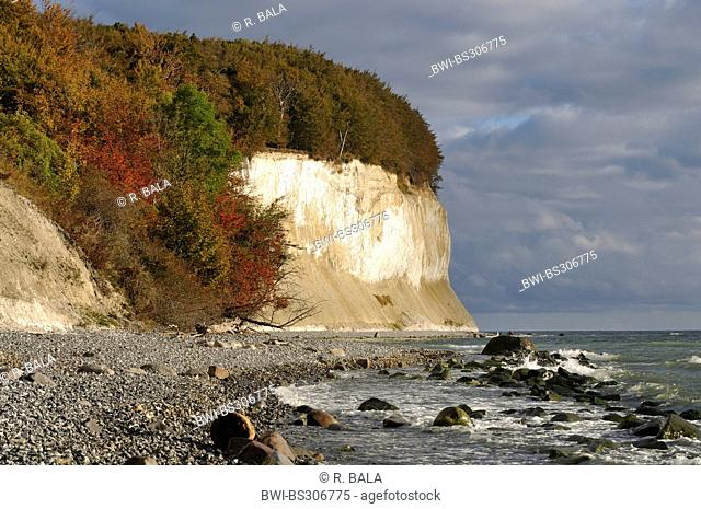 view along the chalk coast, Germany, Mecklenburg-Western Pomerania, Ruegen, Nationalpark Jasmund