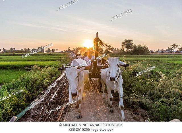 Lindblad Expeditions and National Geographic guests enjoy an oxcart ride to the village of Kampong Tralach, Cambodia, Khmer