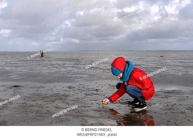 Germany, Lower Saxony, North Sea,   Hamburg Wadden Sea National Park, Neuwerk, low tide, girl playing in mudflat