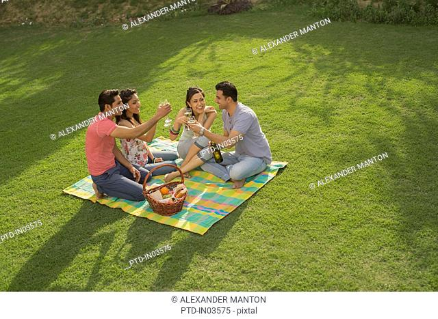 Four people on picnic blanket with wine, celebrating
