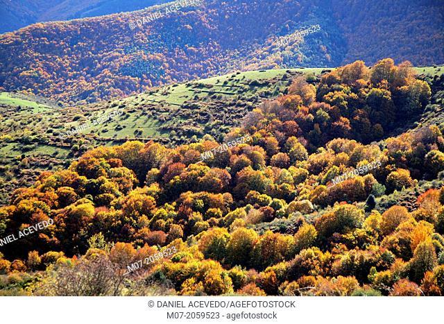 Demanda mountain range, Iberian mountains, Oja Valley, La Rioja, Spain