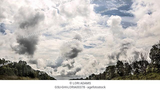 Panoramic View of Dramatic Clouds over Tree Line
