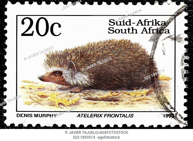 Atelerix frontalis, Animal Stamps, South Africa