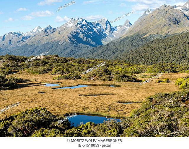 View of Little Mountain Lake and Ailsa Mountains, Key Summit Track, Fiordland National Park, Southland Region, New Zealand