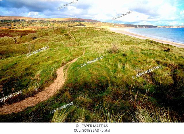 View of Oxwich bay from the dunes, Gower, Wales