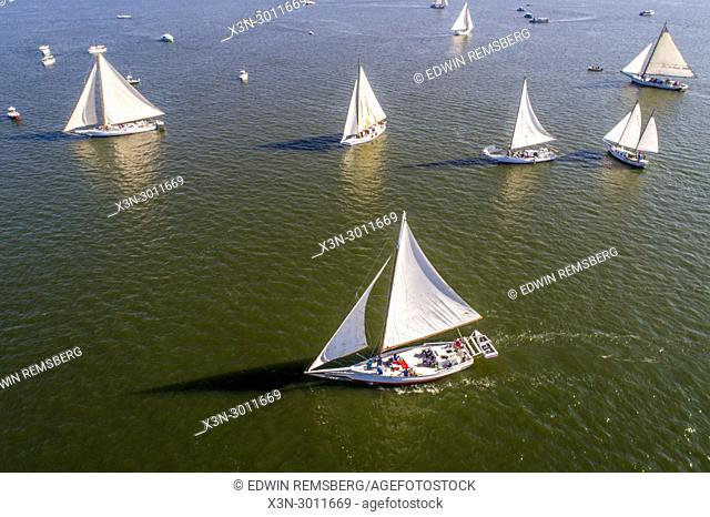 Aerial view showing off the mighty sails of a group of traditional Skipjack boats getting ready to compete in the annual Deal Island Skipjack Races, Deal Island