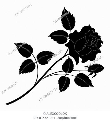 Flower rose, petals and leaves black silhouettes isolated on white background