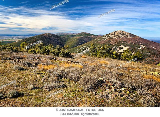 The Cerillón peak in the Montes de Toledo  San Pablo de los Montes  Castilla la Mancha  Spain