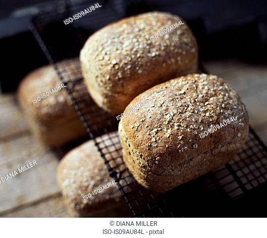 Organic bread with oats, on cooling rack, fresh from oven