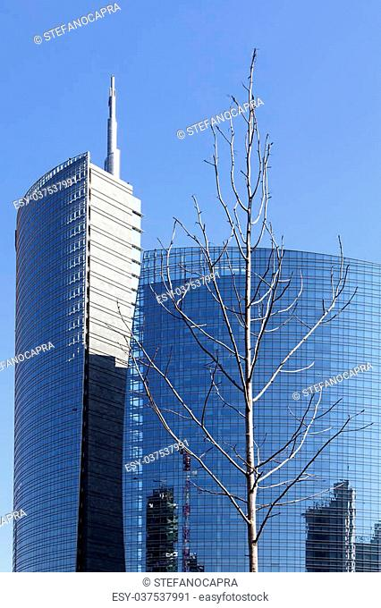 a bare tree is surrounded by glass buildings