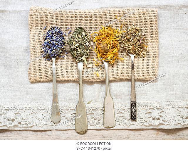 Dried medicinal herbs: lavender (lavandula), meadowsweet (filipendula ulmaria), agrimony (agrimoniae herba) and marigold (calendula officinalis) on silver...