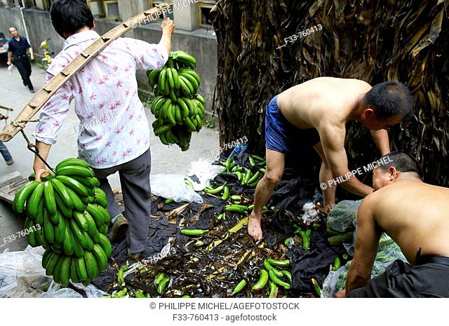 China, Anhui province, city of Tunxi, unloading of banana
