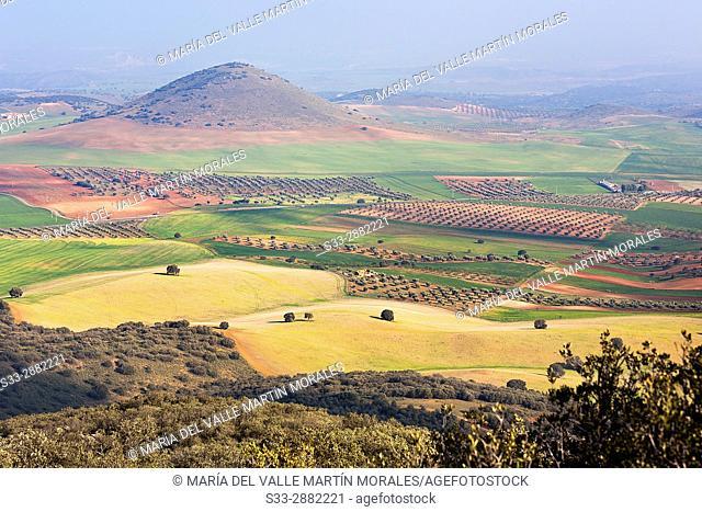 Bañuelos hill in Noez. Toledo. Castilla la Mancha. Spain. Europe