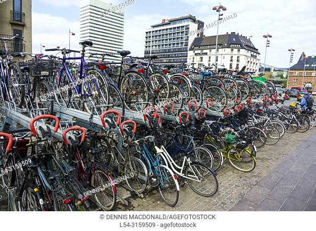 Importance of bicycle transportation in Copenhagen Denmark capital city