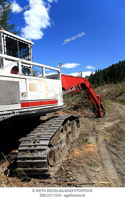 Logging operation on south side of Skeena river, between Terrace and Hazelton, BC