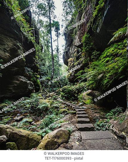 Stony path along rocks