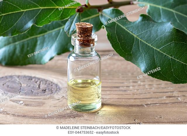 A bottle of essential oil with fresh bay leaves on a table