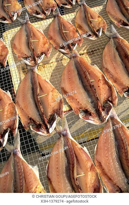 fish drying, Chung Chau island, Islands District, New Territories, Hong-Kong, People's Republic of China, Asia