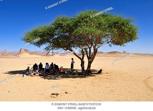 group of tourists resting under a acacia tree, Tassili n' Ajjer National Park, Unesco World Heritage Site, Wilaya Illizi, Algeria, Sahara, North Africa