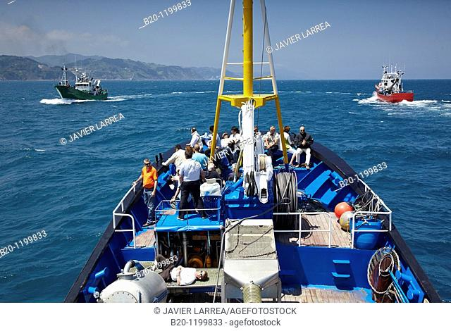 Fishing boat trip to the flysch, Zumaia, Guipuzcoa, Basque Country, Spain