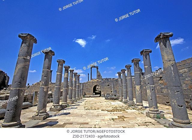 Roman Market, Ancient Roman city of Bosra, Syria