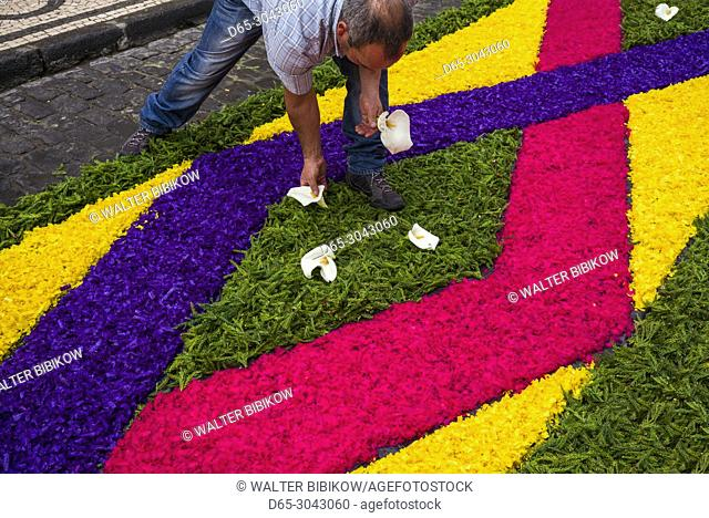 Portugal, Azores, Sao Miguel Island, Ponta Delgada, Festa Santo Christo dos Milagres festival, workers use dyed wood shavings with stencils to make street...