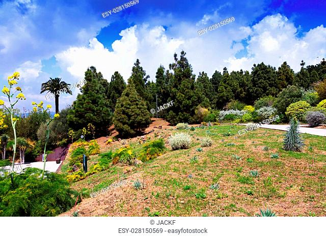 View of Botanical garden of Barcelona in spring, Spain