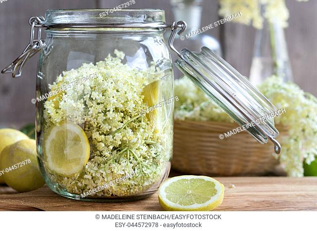 Fresh elder flowers and lemon in a glass jar, ready to prepare a natural elder flower syrup