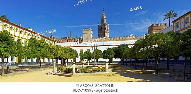 Patio De Las Banderas Giralda Tower Stock Photos And Images Age