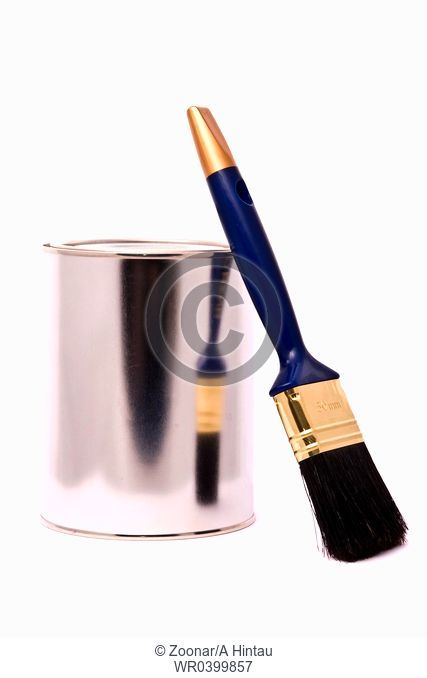 Can of paint and professional brush on a white